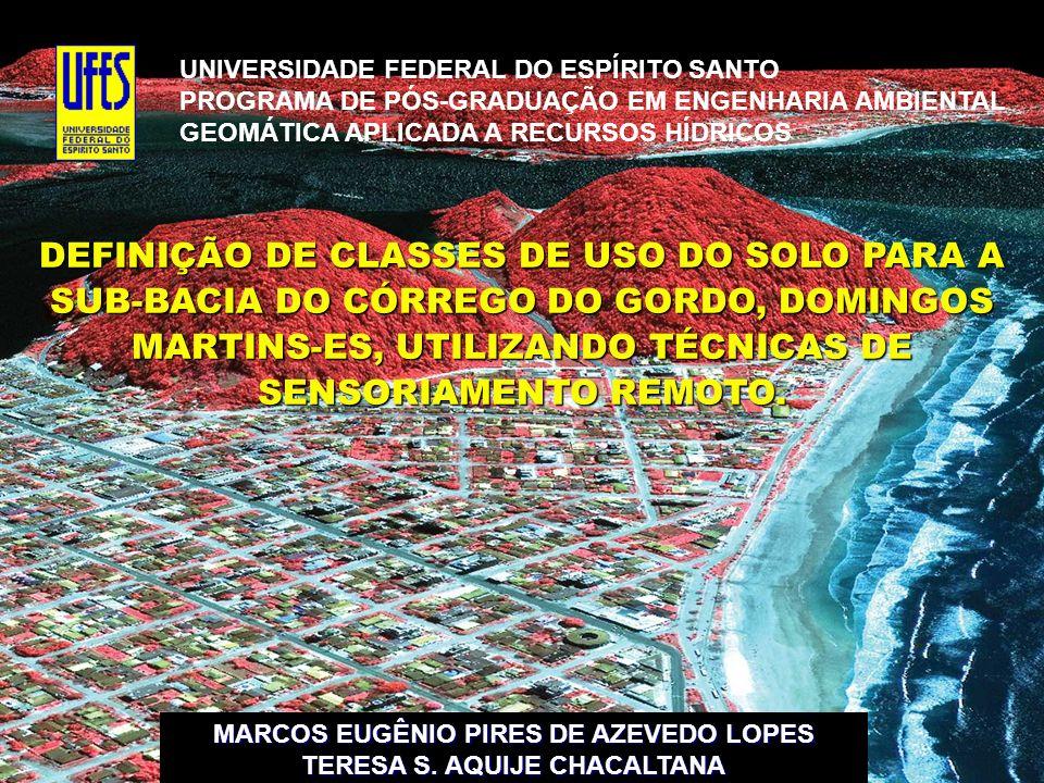 UNIVERSIDADE FEDERAL DO ESPÍRITO SANTO PROGRAMA DE PÓS-GRADUAÇÃO EM ENGENHARIA AMBIENTAL GEOMÁTICA APLICADA A RECURSOS HÍDRICOS DEFINIÇÃO DE CLASSES D