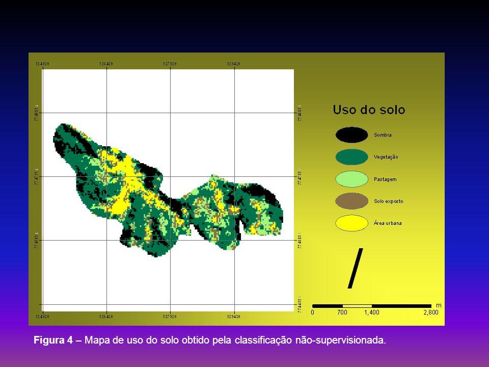 Figura 4 – Mapa de uso do solo obtido pela classificação não-supervisionada.