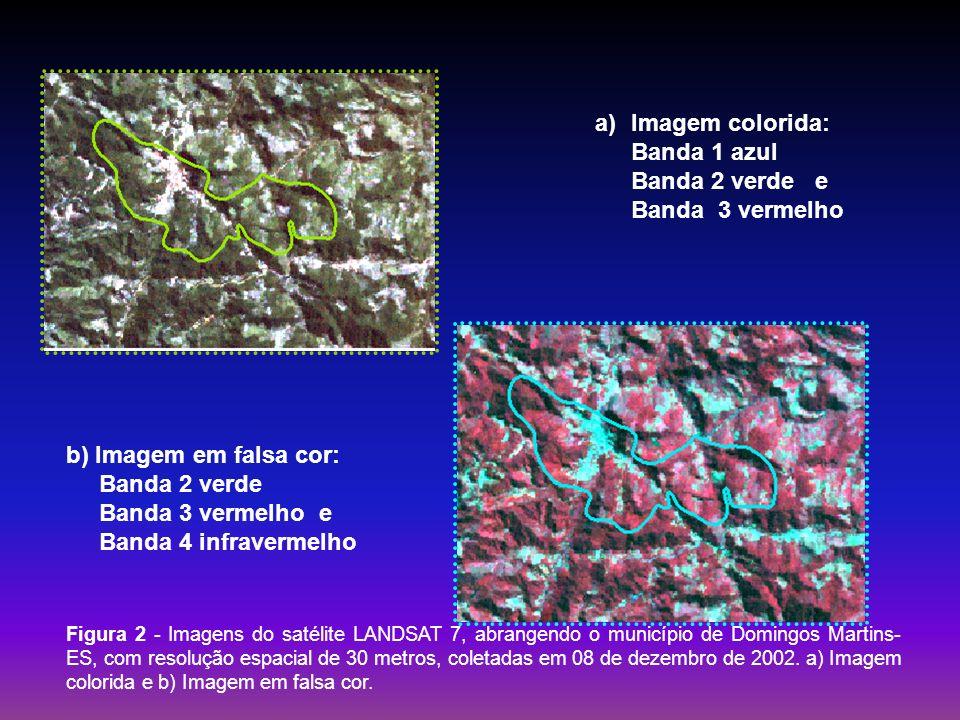 Figura 2 - Imagens do satélite LANDSAT 7, abrangendo o município de Domingos Martins- ES, com resolução espacial de 30 metros, coletadas em 08 de deze