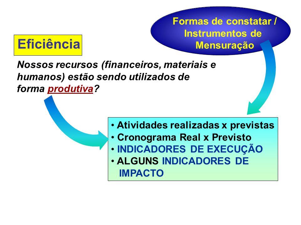 Eficiência Nossos recursos (financeiros, materiais e humanos) estão sendo utilizados de forma produtiva.