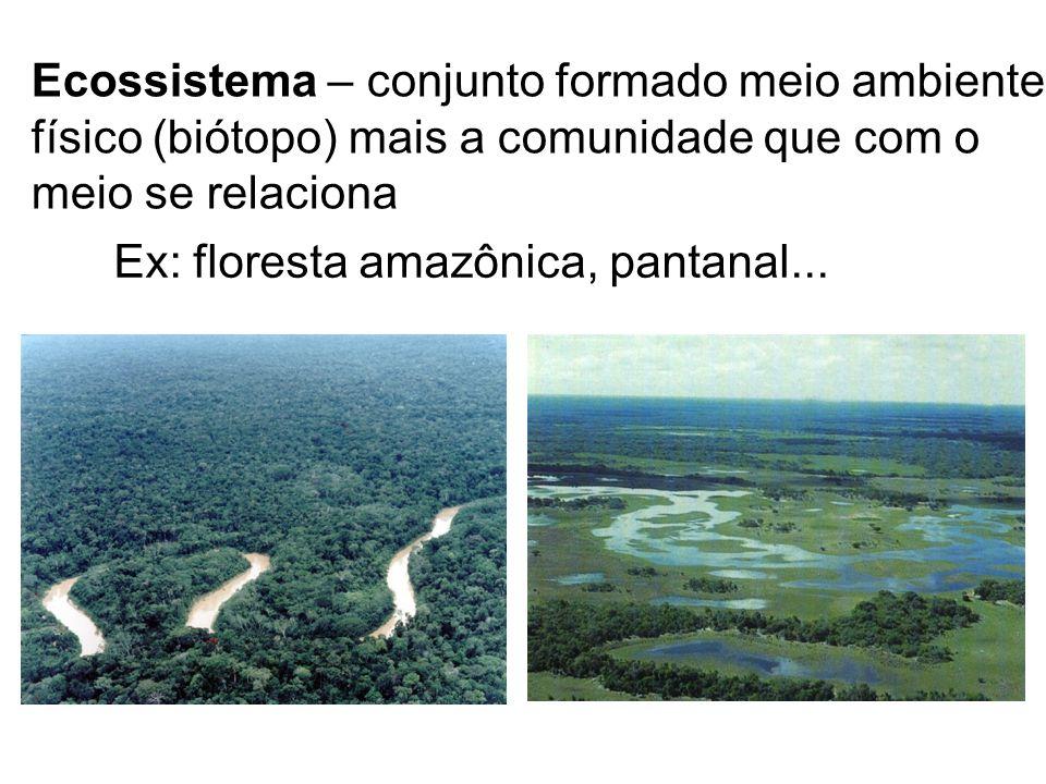 Ecossistema – conjunto formado meio ambiente físico (biótopo) mais a comunidade que com o meio se relaciona Ex: floresta amazônica, pantanal...