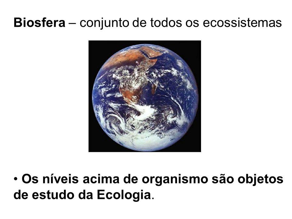 Biosfera – conjunto de todos os ecossistemas Os níveis acima de organismo são objetos de estudo da Ecologia.