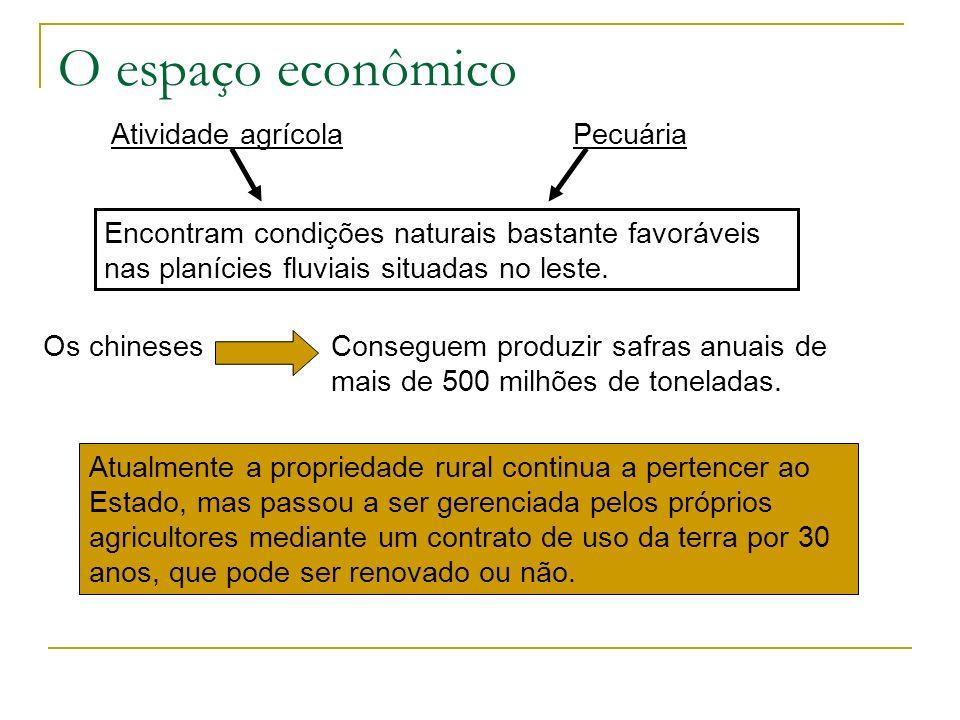 O espaço econômico Atividade agrícola Atualmente a propriedade rural continua a pertencer ao Estado, mas passou a ser gerenciada pelos próprios agricu