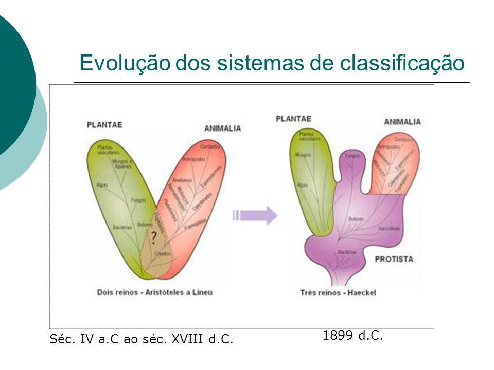 Evolução dos sistemas de classificação Séc. IV a.C ao séc. XVIII d.C. 1899 d.C.