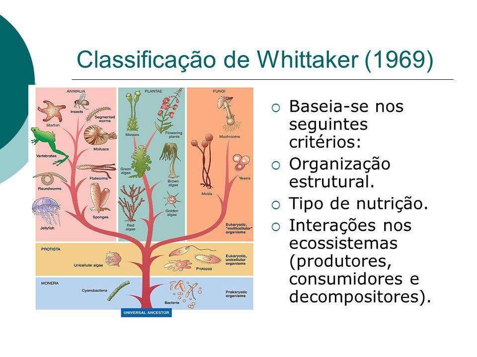 Classificação de Whittaker (1969) Baseia-se nos seguintes critérios: Organização estrutural. Tipo de nutrição. Interações nos ecossistemas (produtores