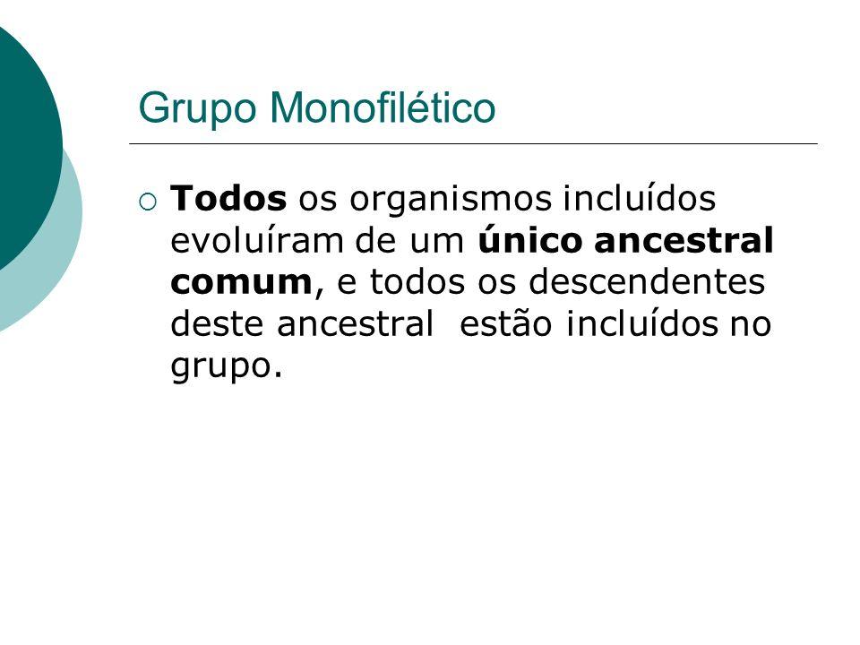 Grupo Monofilético Todos os organismos incluídos evoluíram de um único ancestral comum, e todos os descendentes deste ancestral estão incluídos no gru