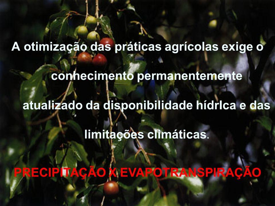 A otimização das práticas agrícolas exige o conhecimento permanentemente atualizado da disponibilidade hídrIca e das limitações climáticas. PRECIPITAÇ