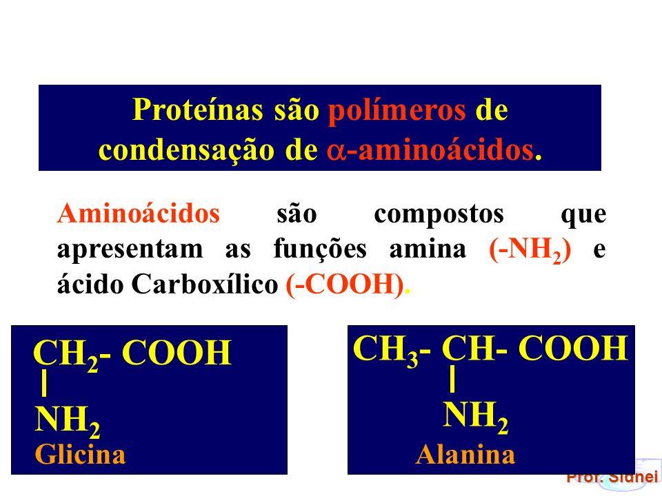 Aminoácidos são compostos que apresentam as funções amina (-NH 2 ) e ácido Carboxílico (-COOH). CH 2 - COOH NH 2 Glicina CH 3 - CH- COOH NH 2 Alanina