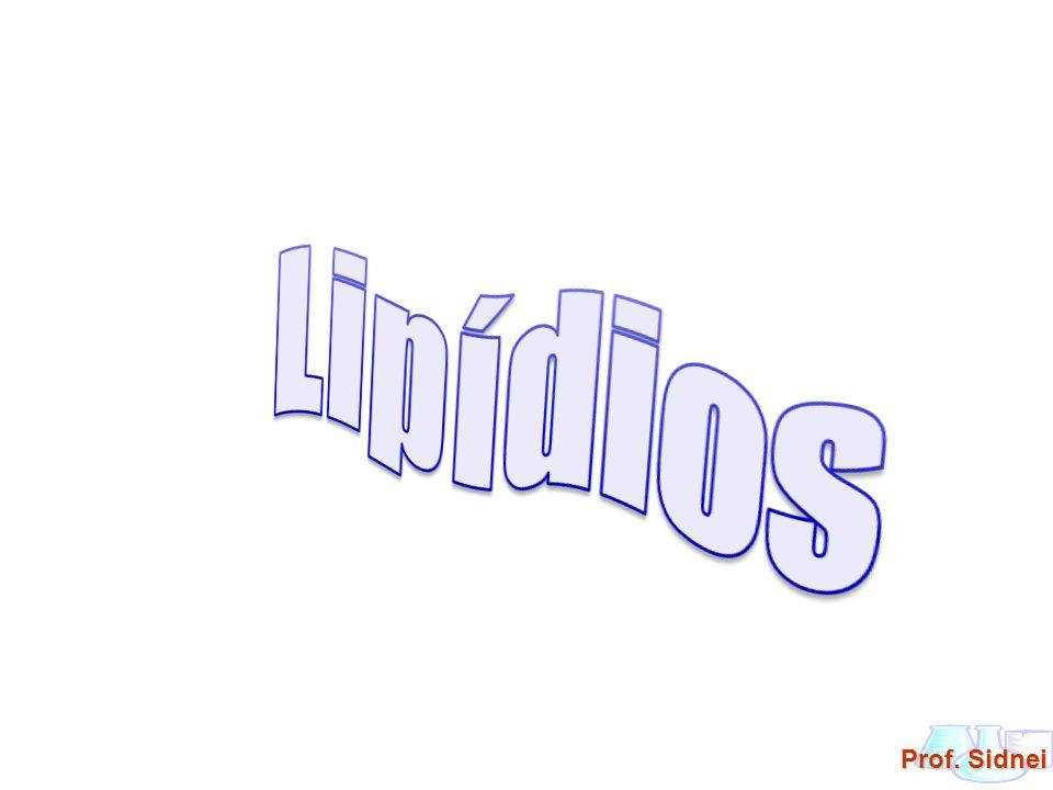 Lipídios: são ésteres derivados de ácidos graxos superiores em reação com álcoois.