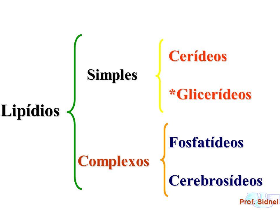 Prof. Sidnei Lipídios Simples Cerídeos*Glicerídeos Complexos FosfatídeosCerebrosídeos