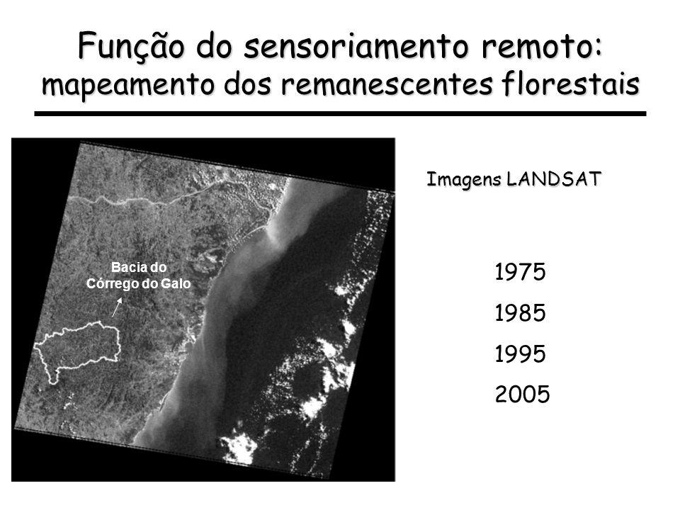 Função do sensoriamento remoto: mapeamento dos remanescentes florestais Imagens LANDSAT Bacia do Córrego do Galo 1975 1985 1995 2005