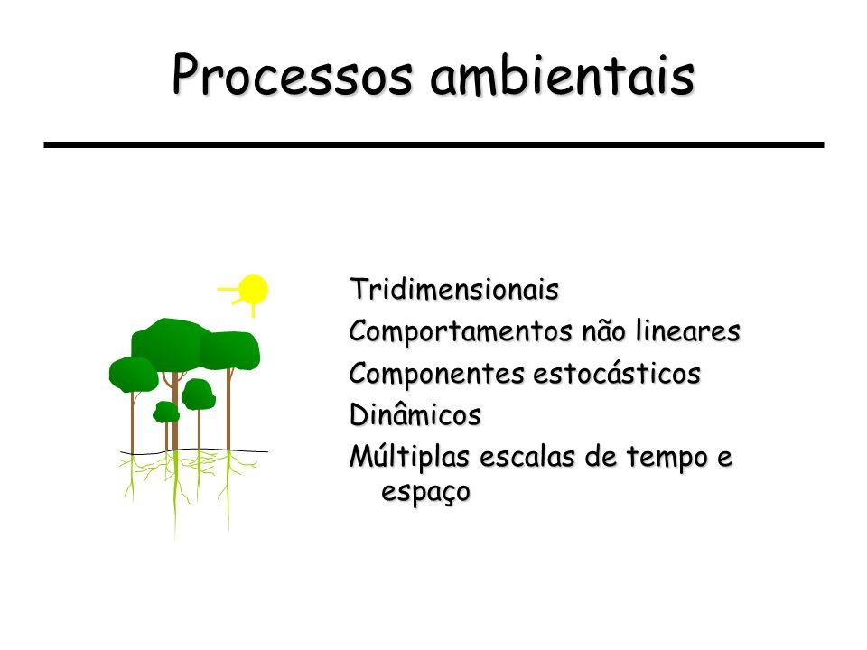 Processos ambientais Tridimensionais Comportamentos não lineares Componentes estocásticos Dinâmicos Múltiplas escalas de tempo e espaço