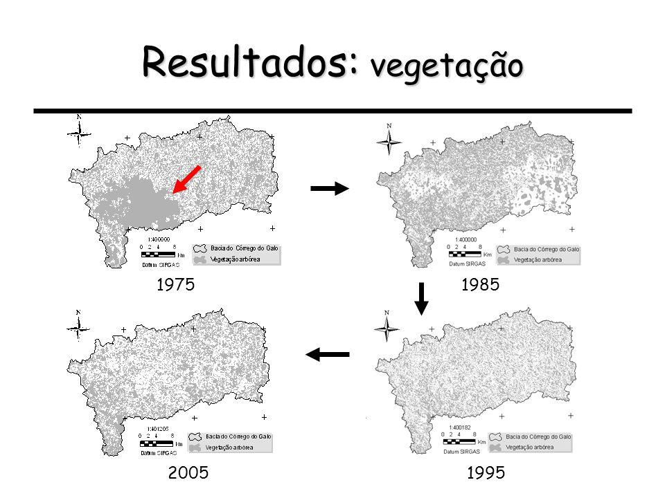 Resultados: vegetação 19851975 19952005