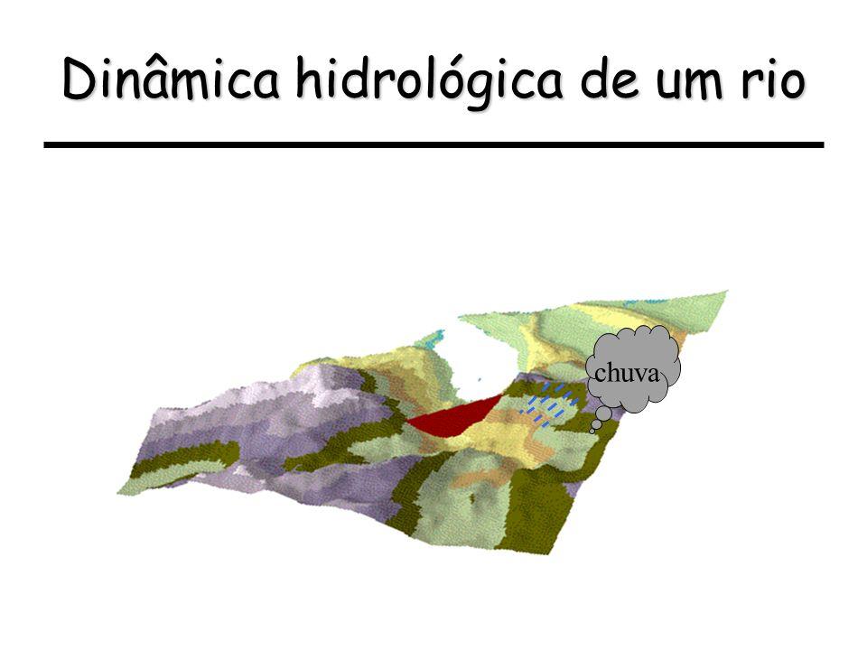 Dinâmica hidrológica de um rio chuva