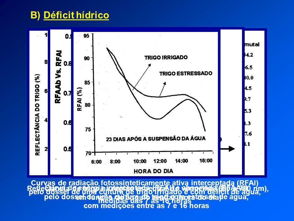 B) Déficit hídrico Reflectância de trigo na região espectral do vermelho (600 a 700 nm), em função do ângulo zenital (hora do dia) Curva de energia in