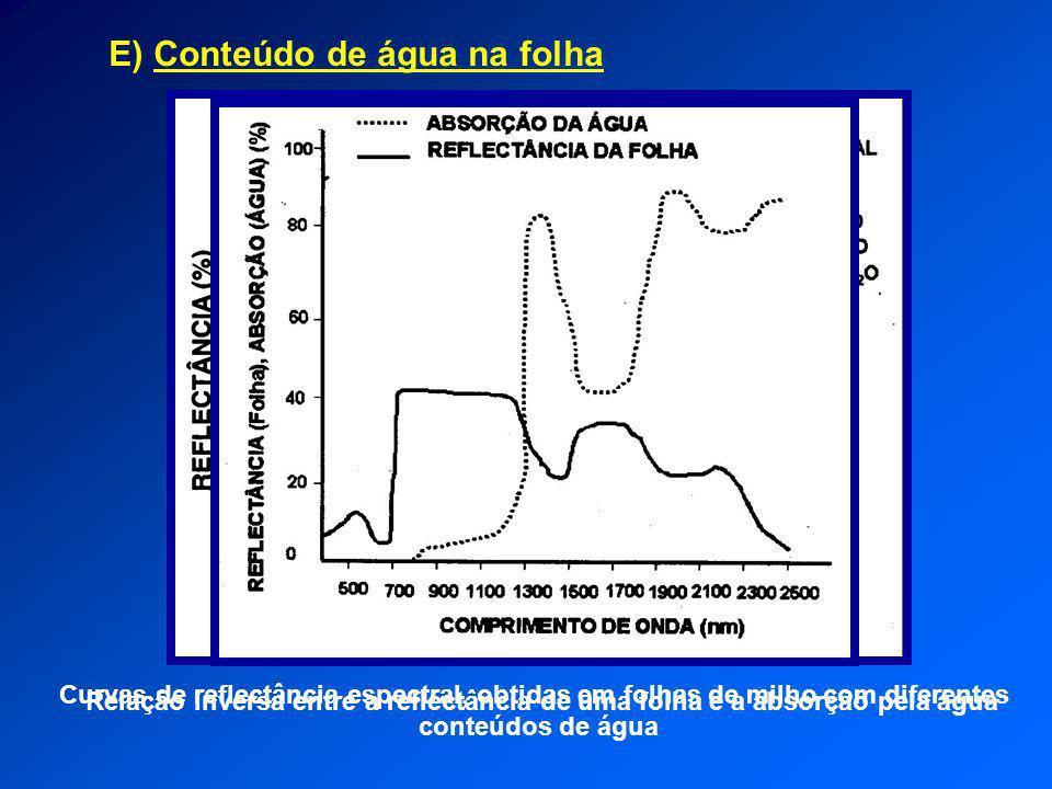 E) Conteúdo de água na folha Curvas de reflectância espectral, obtidas em folhas de milho com diferentes conteúdos de água Relação inversa entre a ref