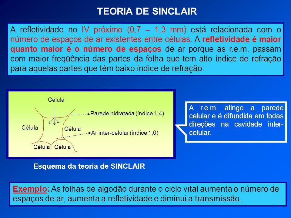 TEORIA DE SINCLAIR A refletividade no IV próximo (0,7 – 1,3 mm) está relacionada com o número de espaços de ar existentes entre células. A refletivida