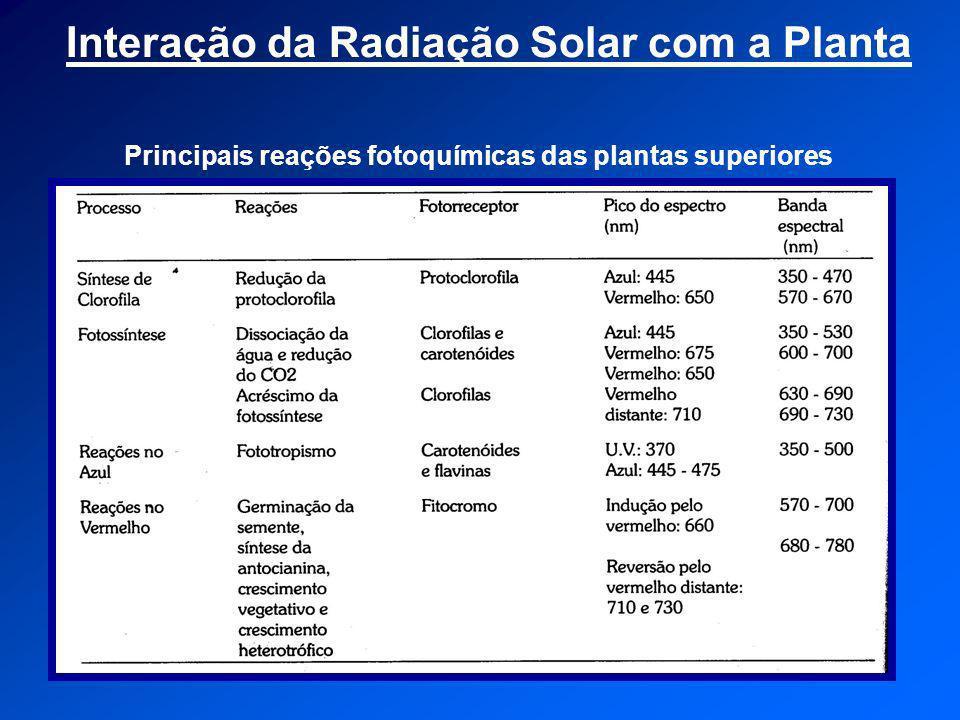 Interação da Radiação Solar com a Planta Principais reações fotoquímicas das plantas superiores