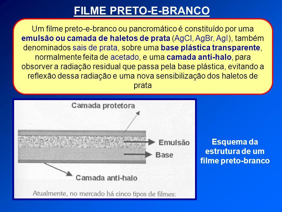 FILME PRETO-E-BRANCO Um filme preto-e-branco ou pancromático é constituído por uma emulsão ou camada de haletos de prata (AgCl, AgBr, AgI), também denominados sais de prata, sobre uma base plástica transparente, normalmente feita de acetado, e uma camada anti-halo, para obsorver a radiação residual que passa pela base plástica, evitando a reflexão dessa radiação e uma nova sensibilização dos haletos de prata Esquema da estrutura de um filme preto-branco