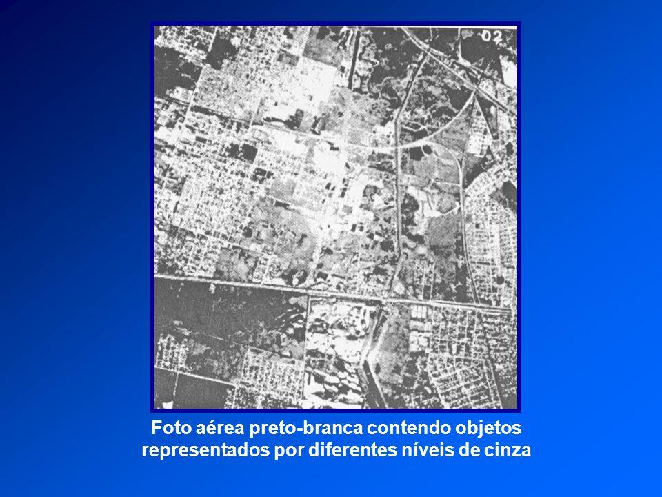 Foto aérea preto-branca contendo objetos representados por diferentes níveis de cinza