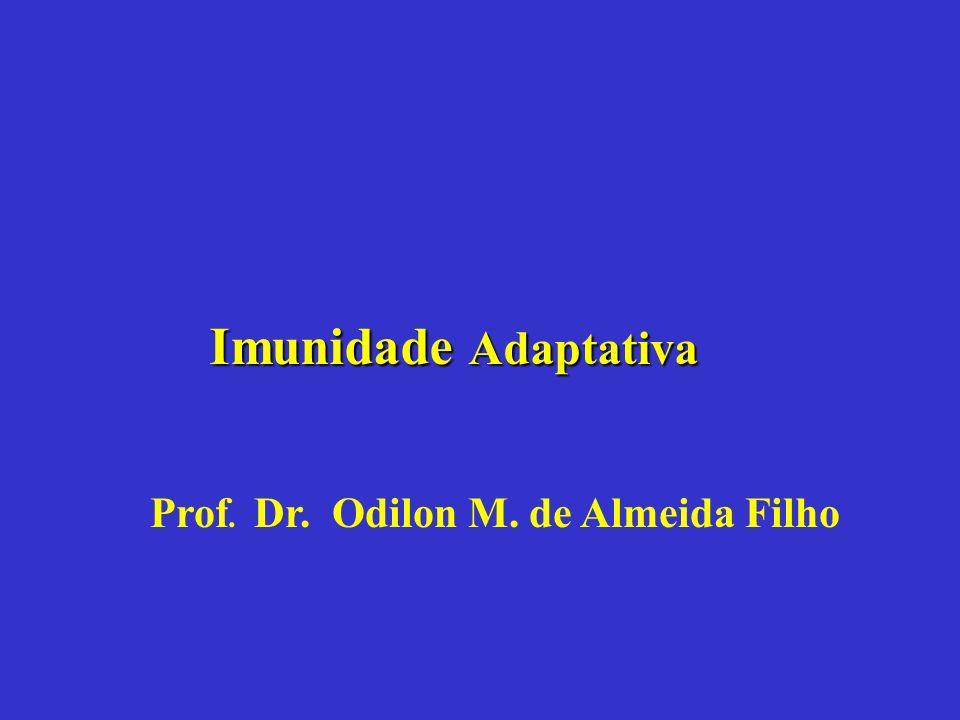 Imunidade Adaptativa Prof. Dr. Odilon M. de Almeida Filho