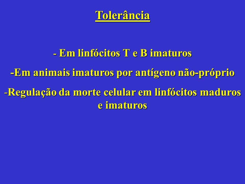 Tolerância - Em linfócitos T e B imaturos -Em animais imaturos por antígeno não-próprio -Regulação da morte celular em linfócitos maduros e imaturos