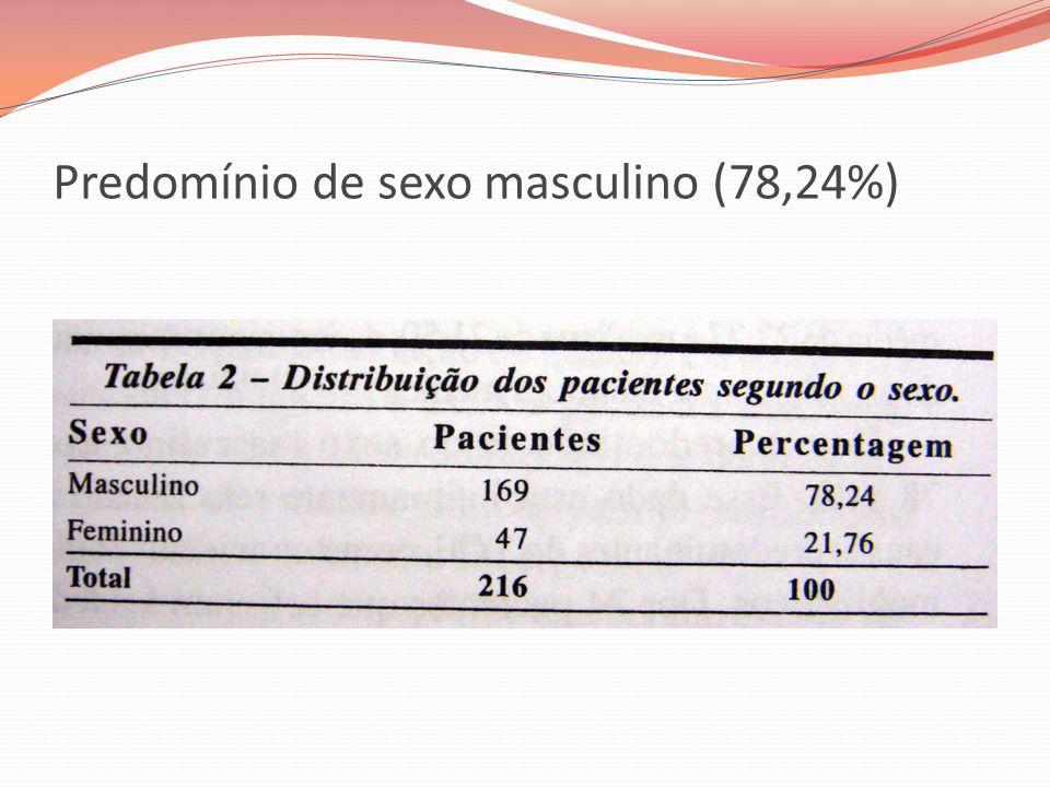 Predomínio de sexo masculino (78,24%)