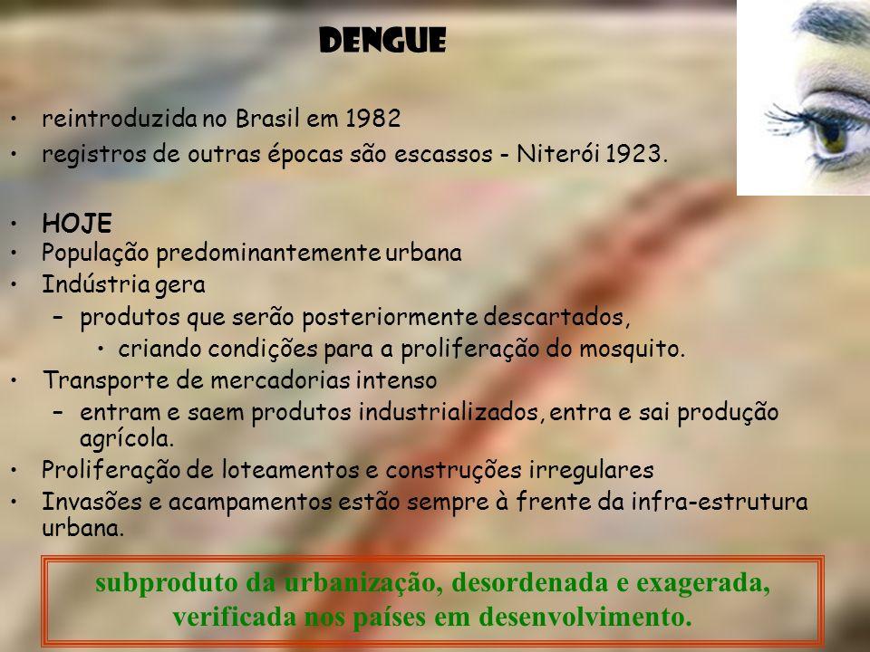reintroduzida no Brasil em 1982 registros de outras épocas são escassos - Niterói 1923. HOJE DENGUE População predominantemente urbana Indústria gera