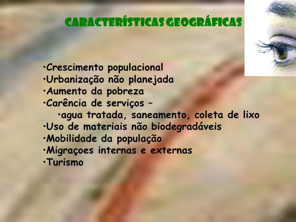 Crescimento populacional Urbanização não planejada Aumento da pobreza Carência de serviços – agua tratada, saneamento, coleta de lixo Uso de materiais