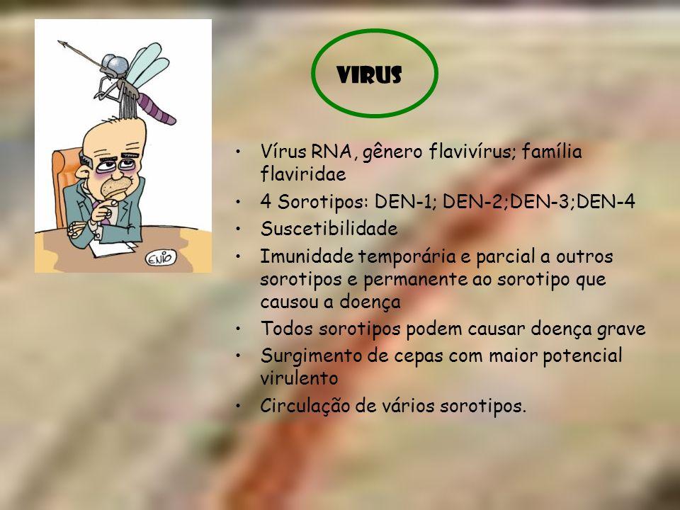 Vírus RNA, gênero flavivírus; família flaviridae 4 Sorotipos: DEN-1; DEN-2;DEN-3;DEN-4 Suscetibilidade Imunidade temporária e parcial a outros sorotip