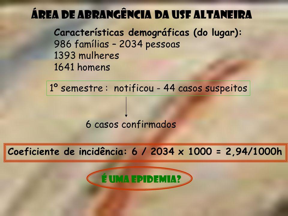 Características demográficas (do lugar): 986 famílias – 2034 pessoas 1393 mulheres 1641 homens 1º semestre : notificou - 44 casos suspeitos 6 casos co