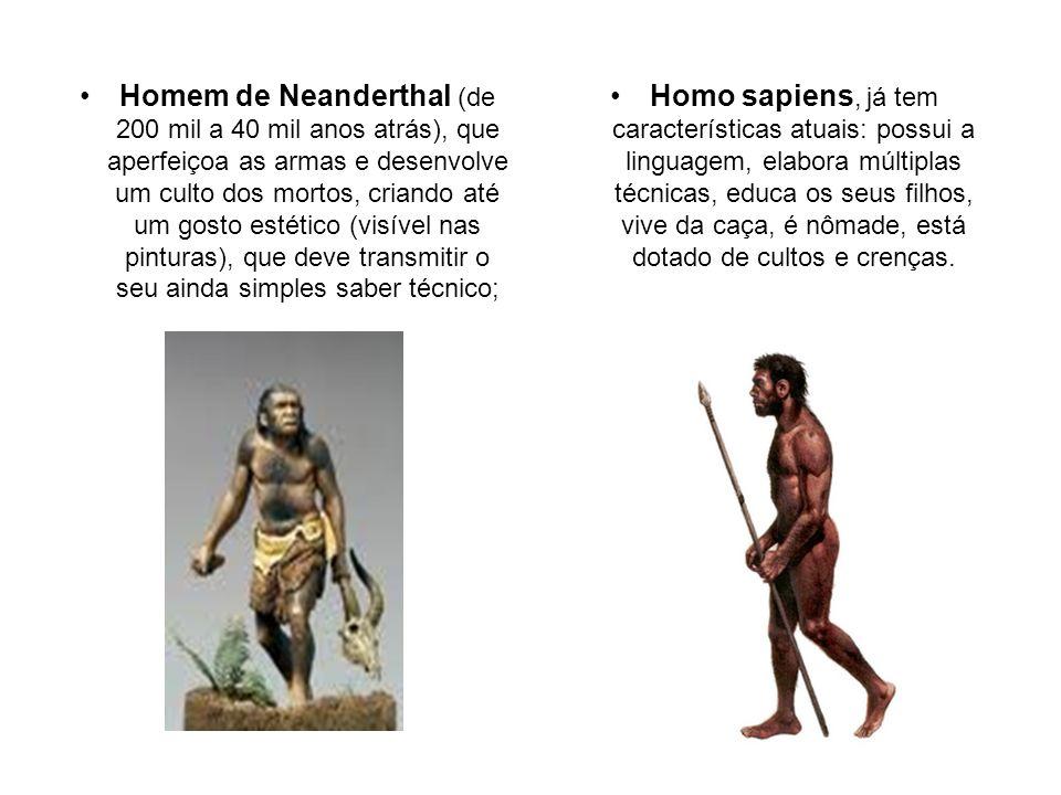 Homo sapiens, já tem características atuais: possui a linguagem, elabora múltiplas técnicas, educa os seus filhos, vive da caça, é nômade, está dotado