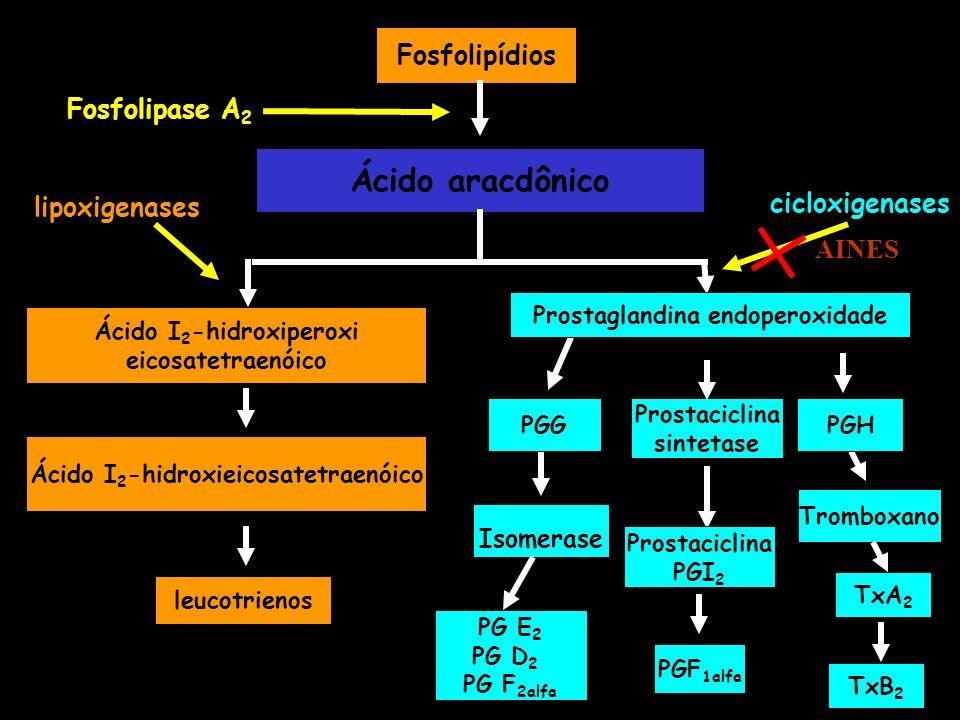 Fosfolipídios Ácido aracdônico Ácido I 2 -hidroxiperoxi eicosatetraenóico leucotrienos TxA 2 PG E 2 PG D 2 PG F 2alfa PGF 1alfa Fosfolipase A 2 lipoxi
