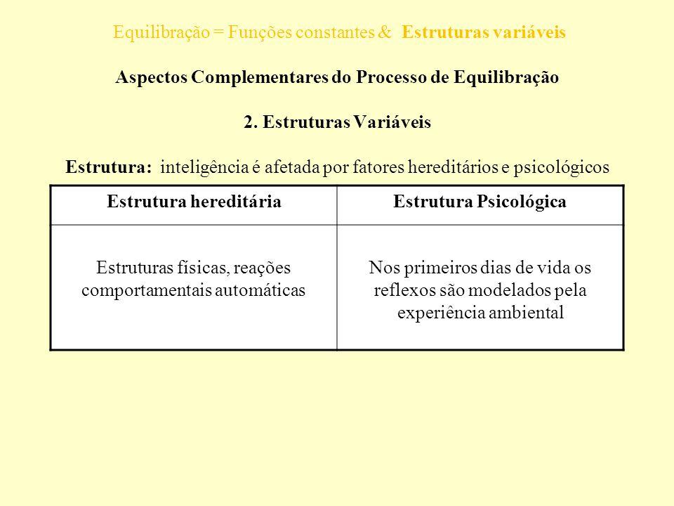 Equilibração = Funções constantes & Estruturas variáveis Aspectos Complementares do Processo de Equilibração 2. Estruturas Variáveis Estrutura: inteli