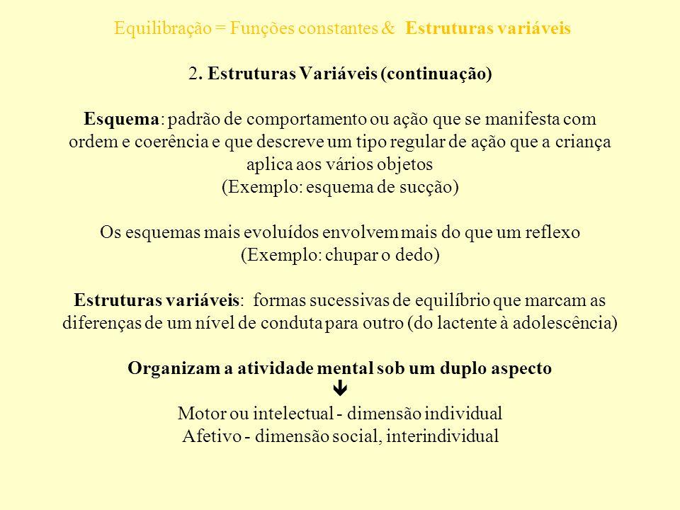 É composta por uma série de esquemas integrados Equilibração = Funções constantes & Estruturas variáveis 2. Estruturas Variáveis (continuação) Esquema