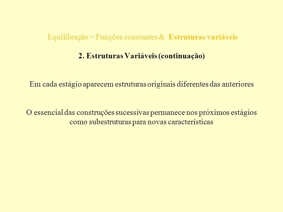 Equilibração = Funções constantes & Estruturas variáveis 2. Estruturas Variáveis (continuação) Em cada estágio aparecem estruturas originais diferente