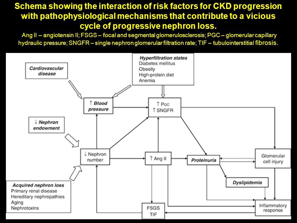 Doença Cardiovascular IRC associada com aumento do risco CV e Doença CV é também associada com risco aumentado de IRC.