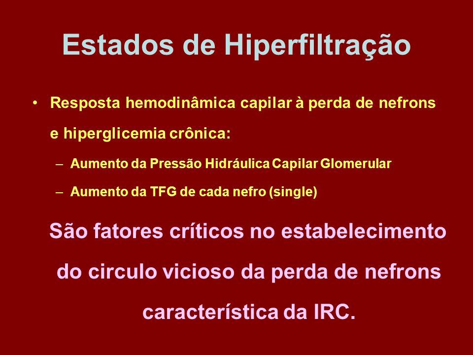 Estados de Hiperfiltração Resposta hemodinâmica capilar à perda de nefrons e hiperglicemia crônica: –Aumento da Pressão Hidráulica Capilar Glomerular