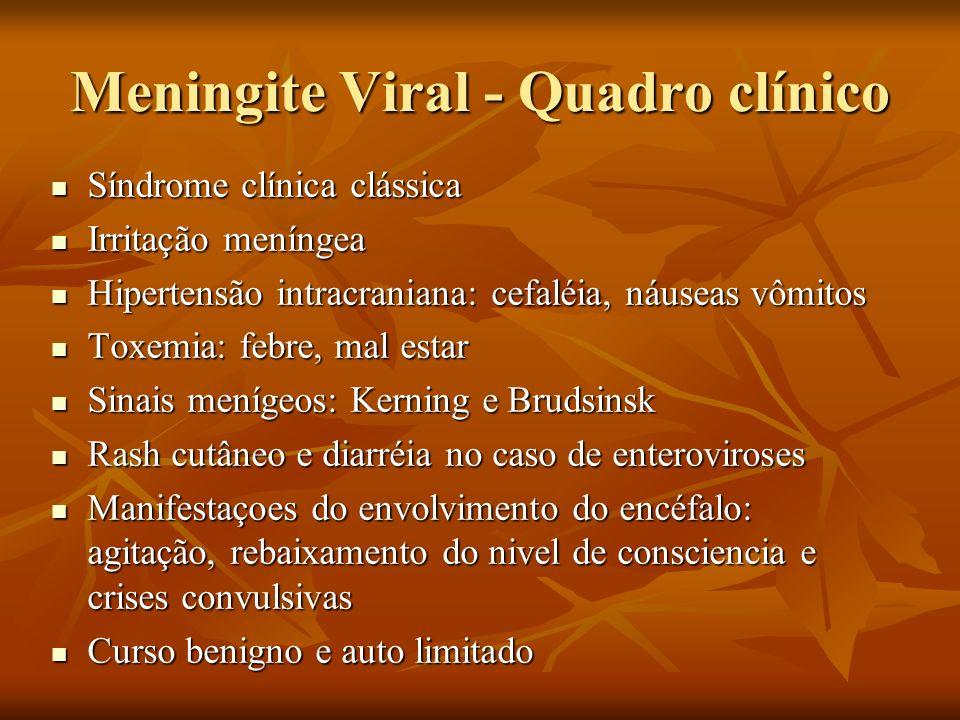 Meningite Viral - Quadro clínico Síndrome clínica clássica Síndrome clínica clássica Irritação meníngea Irritação meníngea Hipertensão intracraniana: cefaléia, náuseas vômitos Hipertensão intracraniana: cefaléia, náuseas vômitos Toxemia: febre, mal estar Toxemia: febre, mal estar Sinais menígeos: Kerning e Brudsinsk Sinais menígeos: Kerning e Brudsinsk Rash cutâneo e diarréia no caso de enteroviroses Rash cutâneo e diarréia no caso de enteroviroses Manifestaçoes do envolvimento do encéfalo: agitação, rebaixamento do nivel de consciencia e crises convulsivas Manifestaçoes do envolvimento do encéfalo: agitação, rebaixamento do nivel de consciencia e crises convulsivas Curso benigno e auto limitado Curso benigno e auto limitado