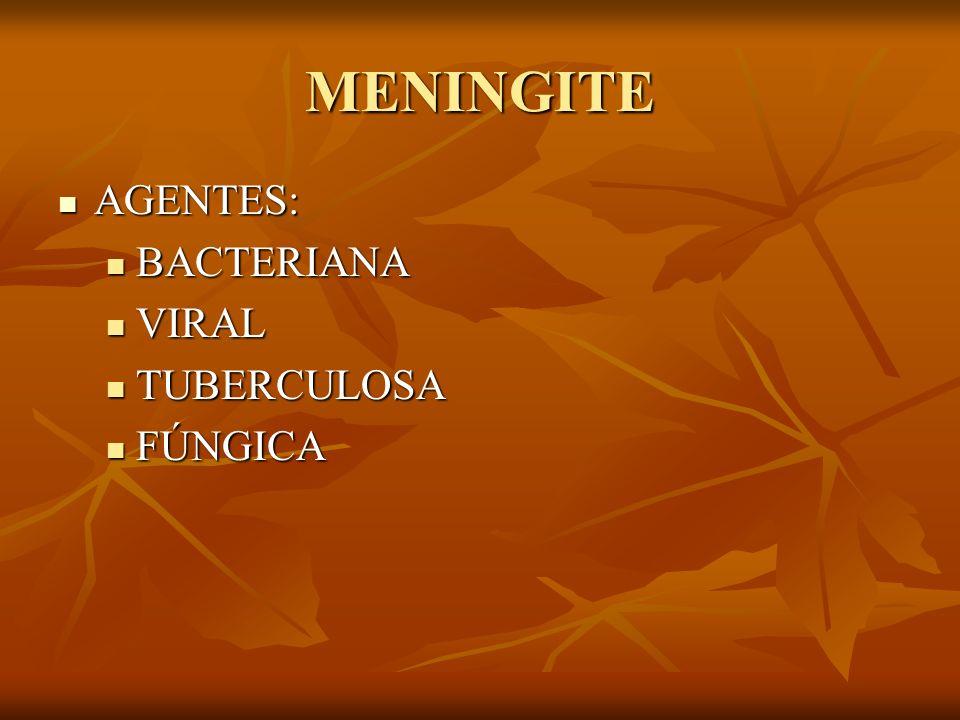 MENINGITE AGENTES: AGENTES: BACTERIANA BACTERIANA VIRAL VIRAL TUBERCULOSA TUBERCULOSA FÚNGICA FÚNGICA