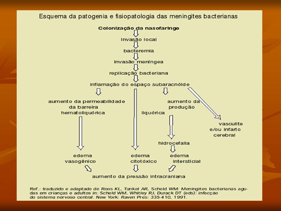 Agentes mais comuns Haemophilus influenzae - 20,3% Haemophilus influenzae - 20,3% Neisseria meningitidis – 20,2% Neisseria meningitidis – 20,2% Streptococcus pneumoniae -11,6% Streptococcus pneumoniae -11,6%