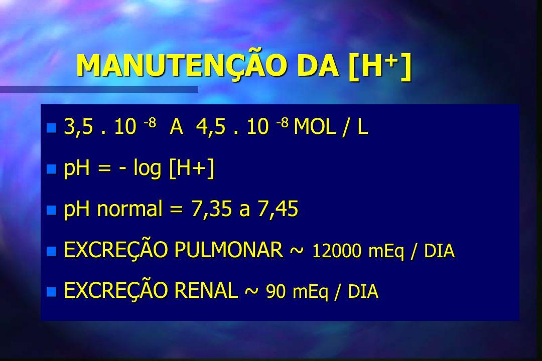 MANUTENÇÃO DA [H + ] n 3,5. 10 -8 A 4,5. 10 -8 MOL / L n pH = - log [H+] n pH normal = 7,35 a 7,45 n EXCREÇÃO PULMONAR ~ 12000 mEq / DIA n EXCREÇÃO RE