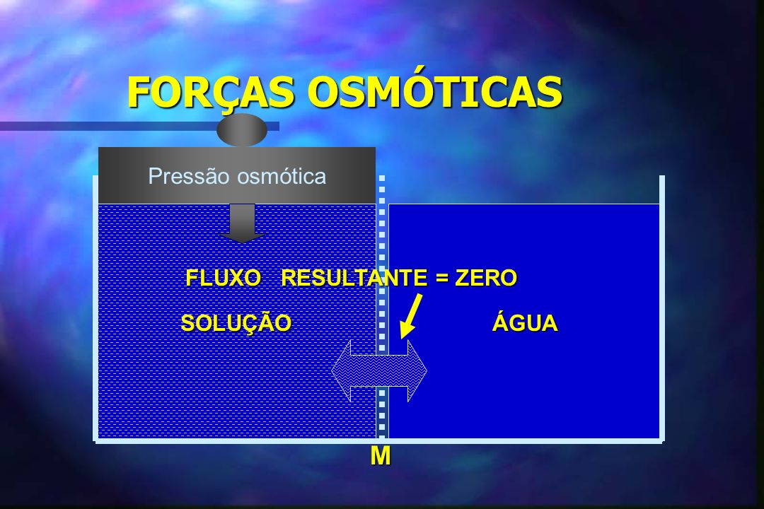 SOLUÇÃOÁGUA FLUXO RESULTANTE = ZERO M Pressão osmótica