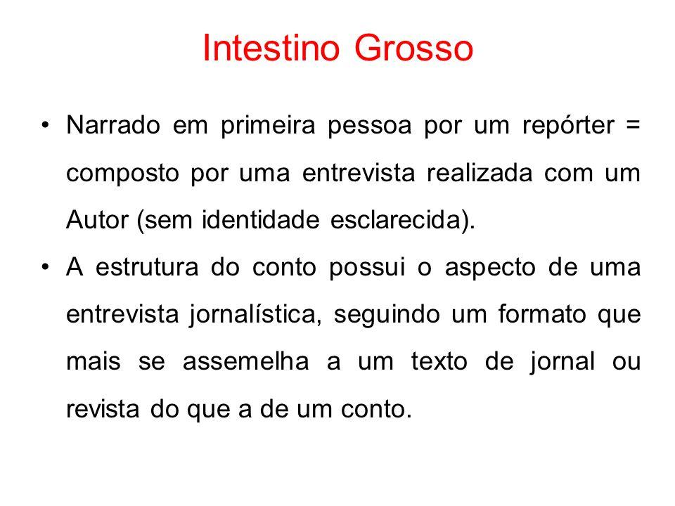 Intestino Grosso Narrado em primeira pessoa por um repórter = composto por uma entrevista realizada com um Autor (sem identidade esclarecida). A estru