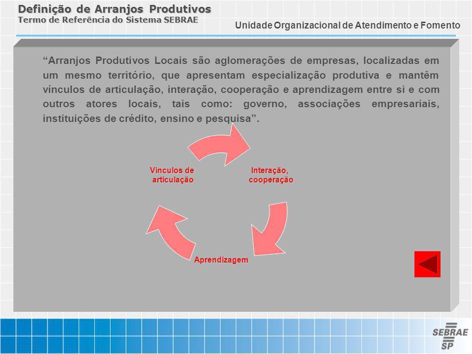 Definição de Arranjos Produtivos Termo de Referência do Sistema SEBRAE Arranjos Produtivos Locais são aglomerações de empresas, localizadas em um mesm