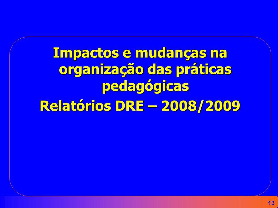 13 Impactos e mudanças na organização das práticas pedagógicas Relatórios DRE – 2008/2009