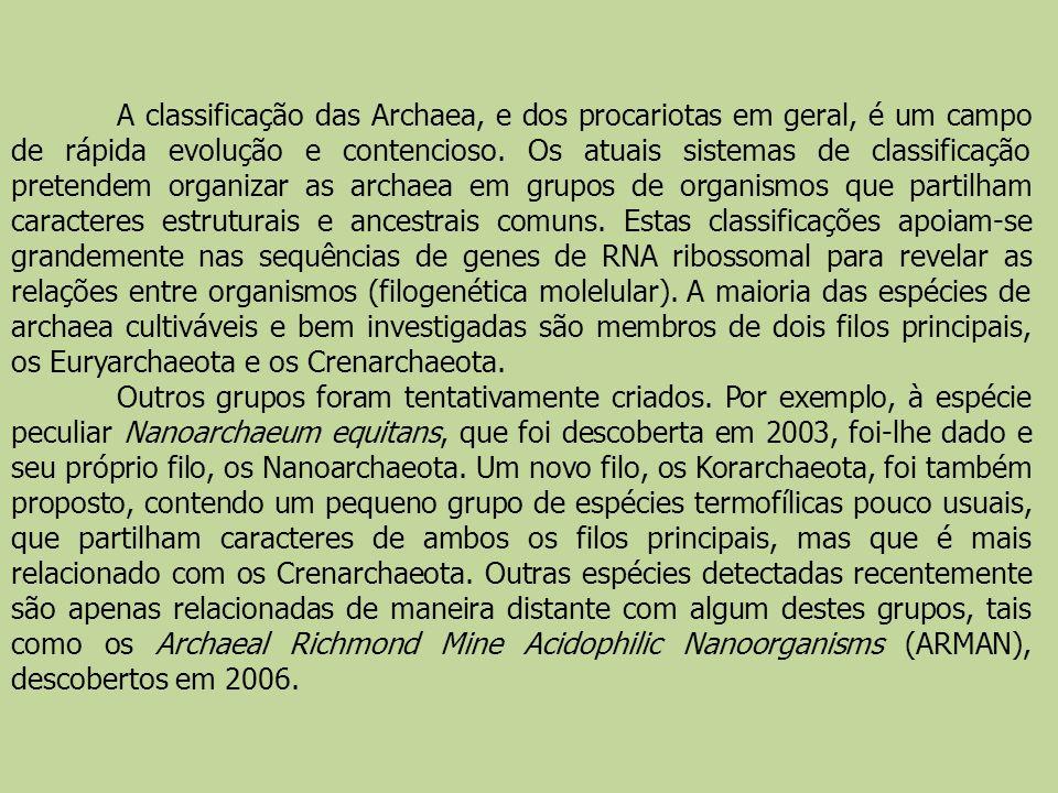A classificação das Archaea, e dos procariotas em geral, é um campo de rápida evolução e contencioso. Os atuais sistemas de classificação pretendem or