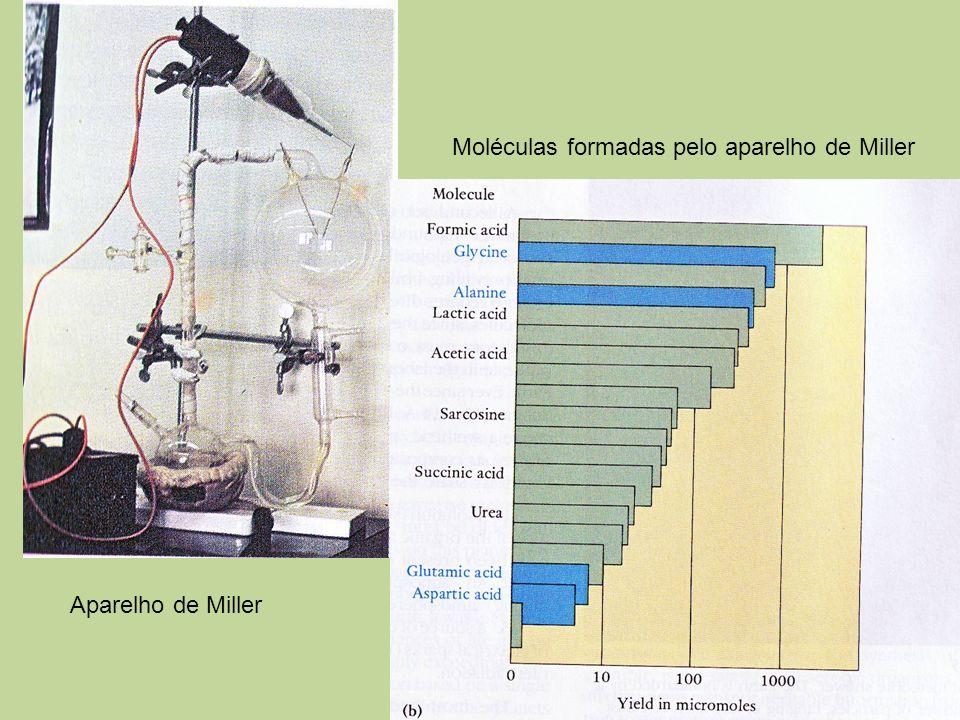 Moléculas formadas pelo aparelho de Miller Aparelho de Miller