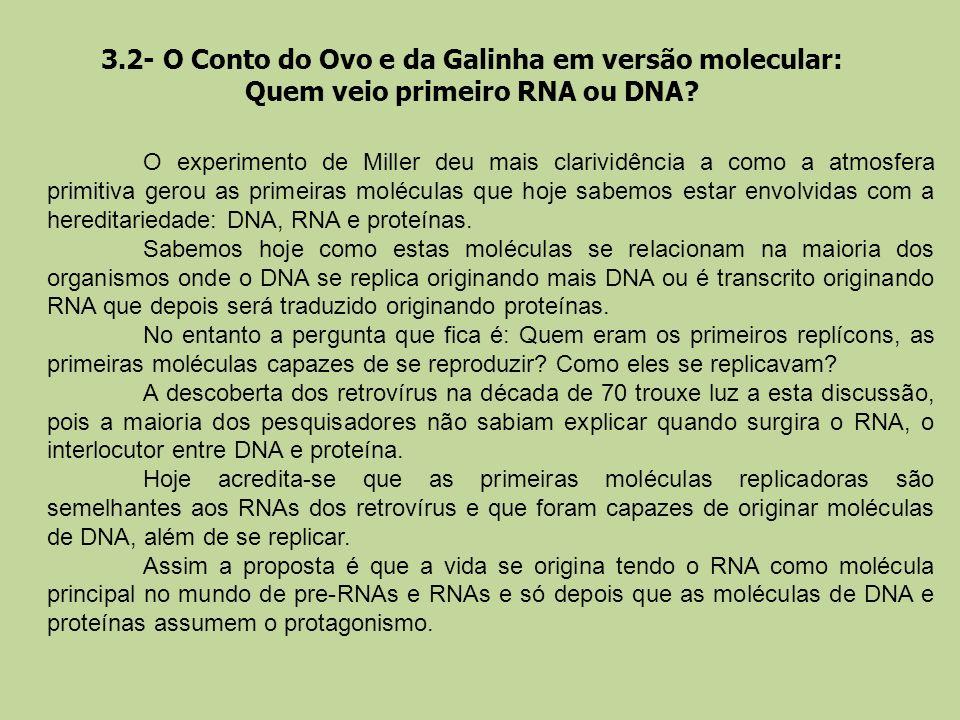 3.2- O Conto do Ovo e da Galinha em versão molecular: Quem veio primeiro RNA ou DNA? O experimento de Miller deu mais clarividência a como a atmosfera