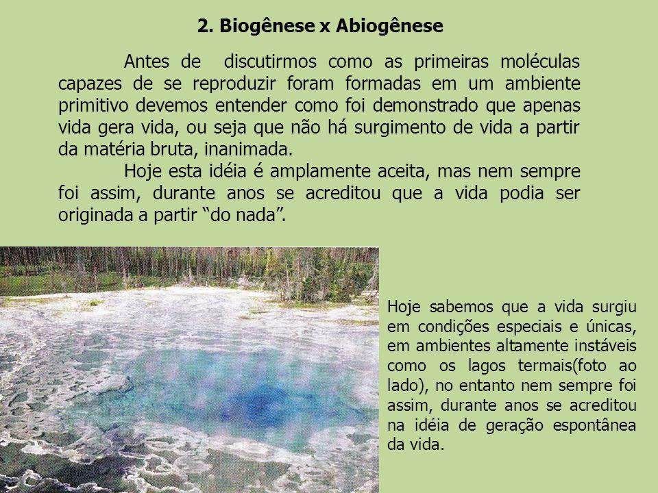 2. Biogênese x Abiogênese Antes de discutirmos como as primeiras moléculas capazes de se reproduzir foram formadas em um ambiente primitivo devemos en